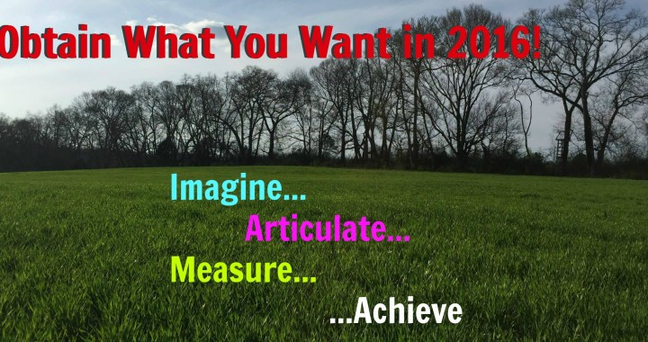 obtain what you want in 2016
