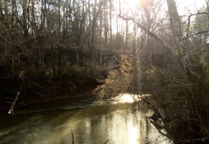 The Chickamauga Creek that borders our property